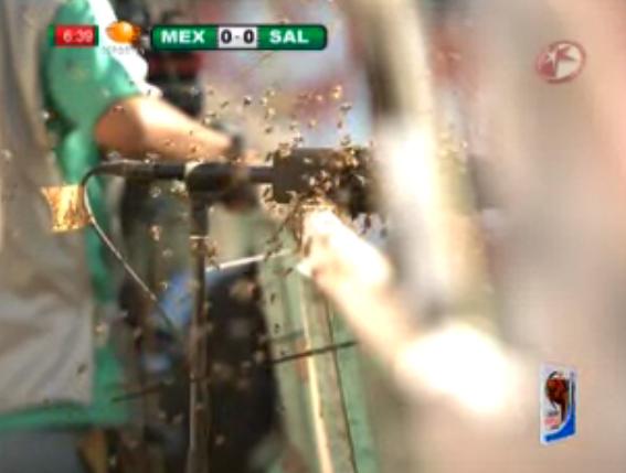 Abejas interrumpen juego en el Azteca